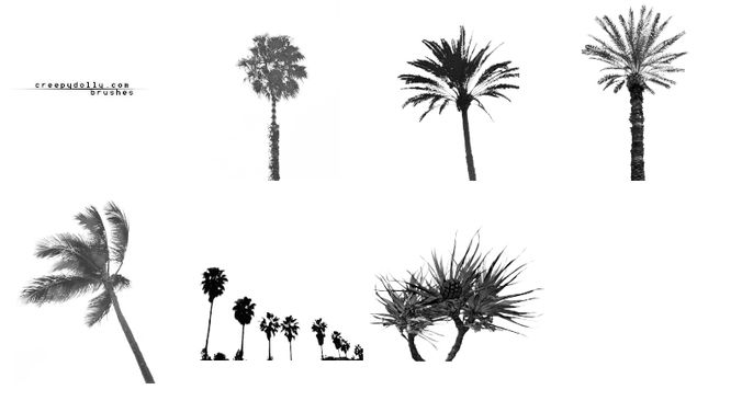 6 Palm tree brushes
