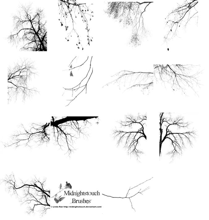 Tree border brushes