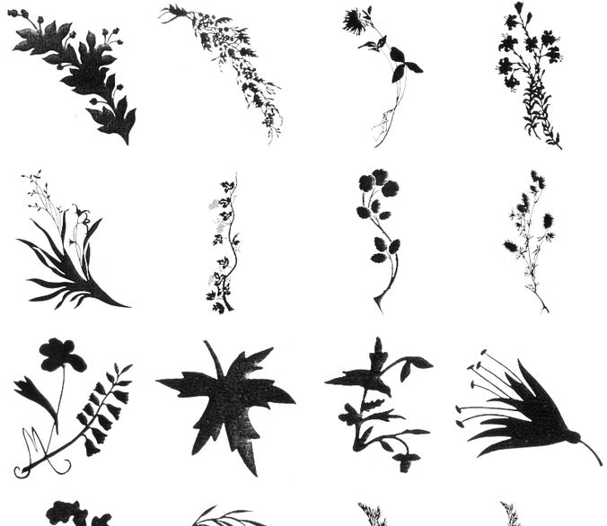 Photoshop Plant Brushes
