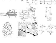 Polymer Theory