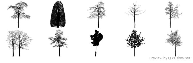BRUSHES trees