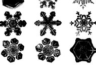 Snowflakes brush set
