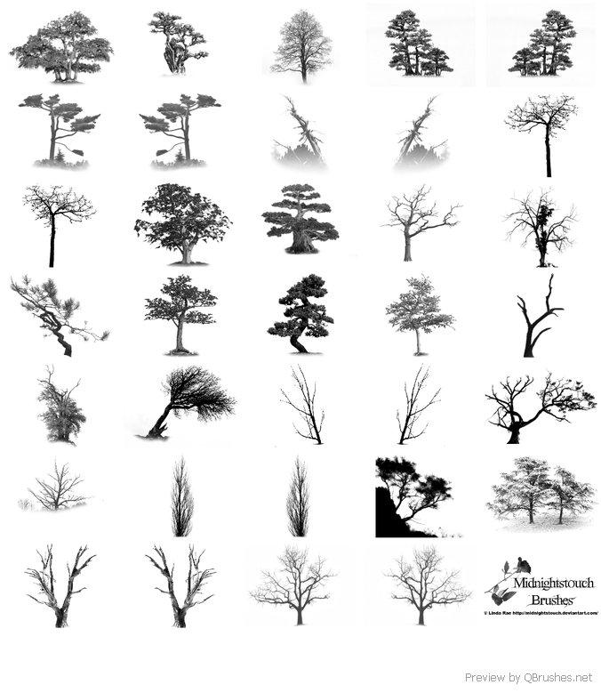 35 Photoshop 7 tree brushes