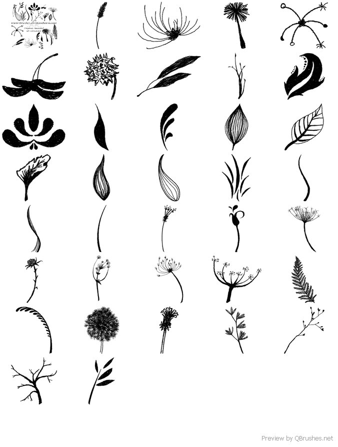 Leaves and Foliage Brushes
