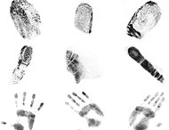 Fingerprints brushes