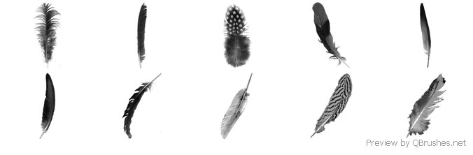 Feather Brushes 02