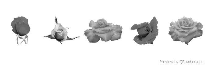 Rose flower brush