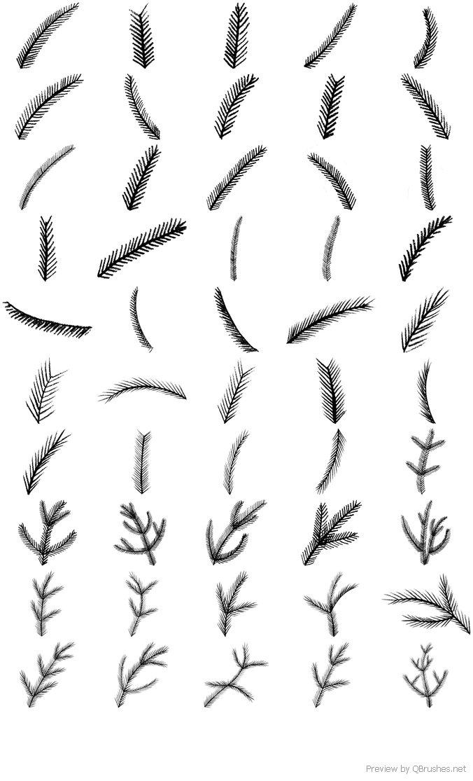 Pine Brushes