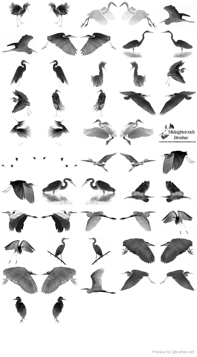 26 PS 7 Egret brushes