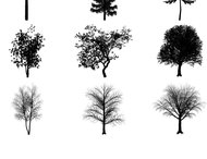 Tree brushes promo pack