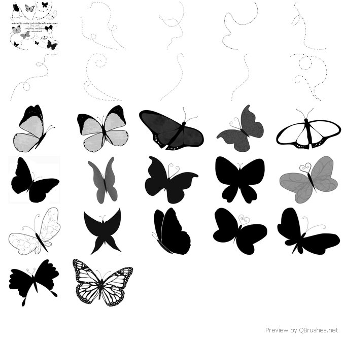 Butterflies and trails