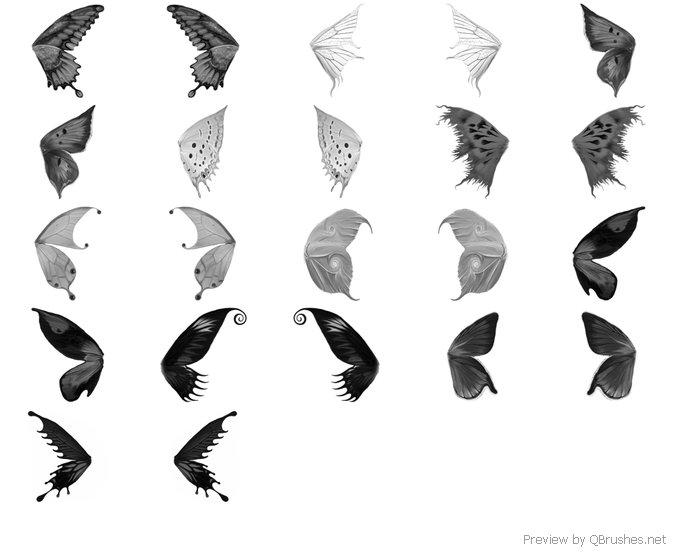 Wing Brush Set