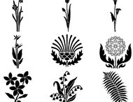 72 Large floral deco brushes