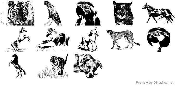 Animals free brushes