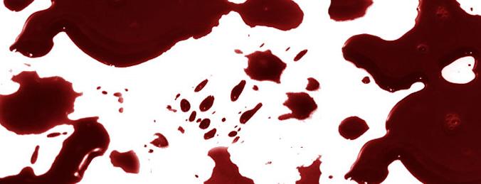 Shad0ws Blood
