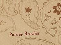 Paisley Brushes