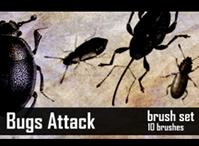 Bugs Brush Set