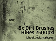 Dirt Brush Set