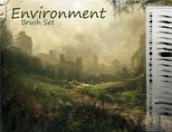 Environment Set