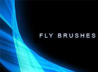 Fly Brushes