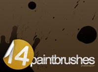 14 Paintbrush